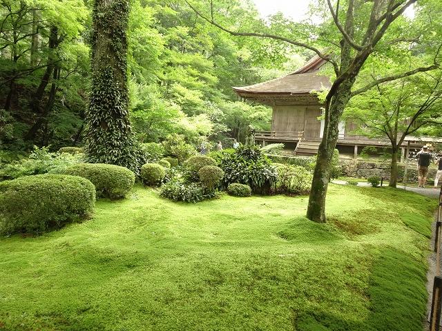 京都 三千院6