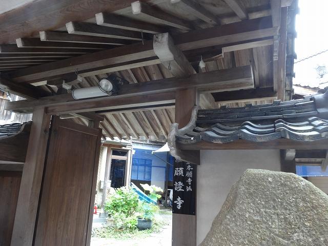 滋賀 沖島 猫