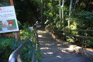 等々力渓谷入り口:階段