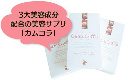 クリスマスプレゼントキャンペーン:カムコラ