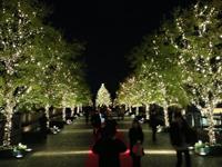 都内近郊の癒しのイルミネーションスポット:恵比寿ガーデンプレイスのイルミネーション2