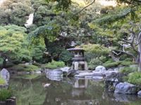 旧古河庭園のバラフェスティバル:心字池