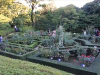 旧古河庭園のバラフェスティバル:西洋庭園1